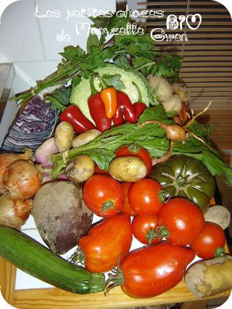 Mon premier panier de légumes bio tout droit venu de l'AMAP du coin !