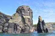 Irlande embouchure du Shannon - Falaise éléphant