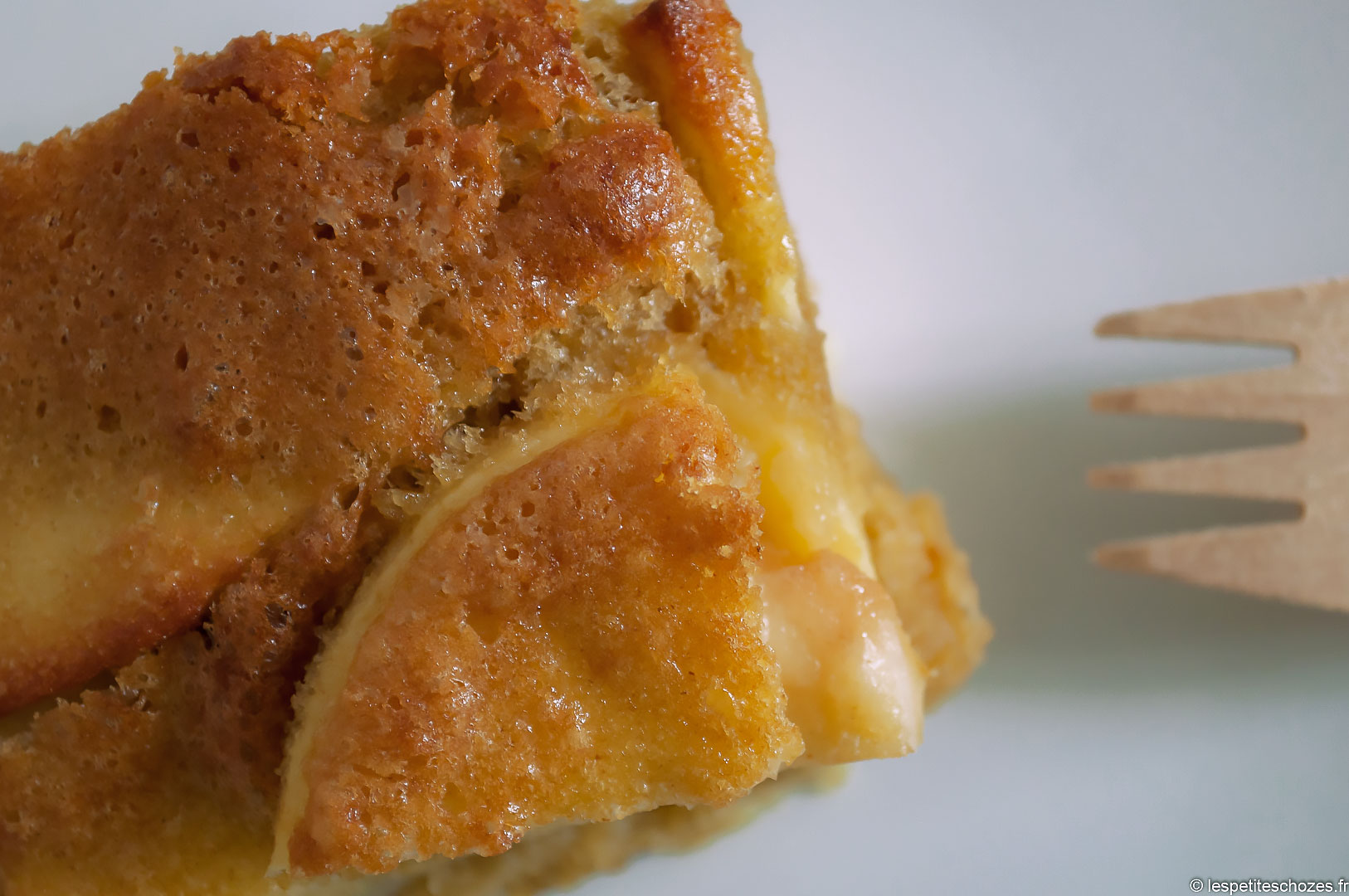 Gâteau rustique aux pommes - Les petites chozes