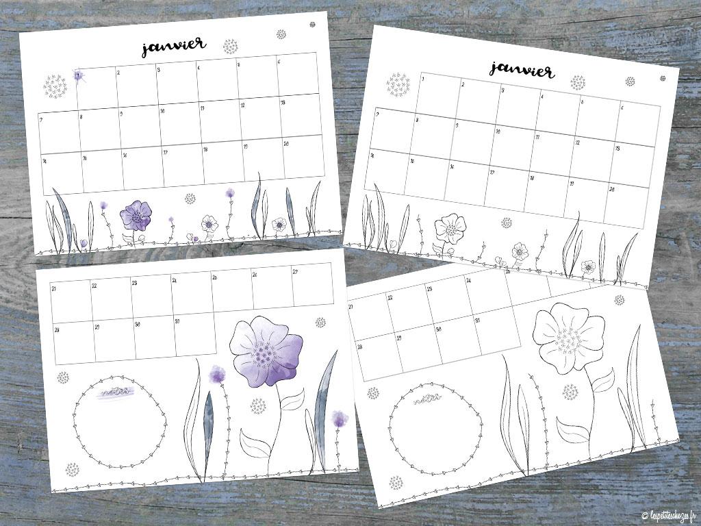 calendrier familial 2019 aquarelle ou à colorier Les petites chozes